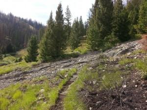 Rocky debris flow over Castle Creek Trail No. 140.