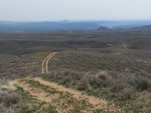 There are miles of two-track roads to explore between Richardson Summit and Rock Creek Road