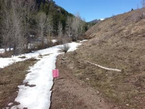 The Old Adams Gulch Road Trail #146 is closed above its intersection with Lane's Trail.