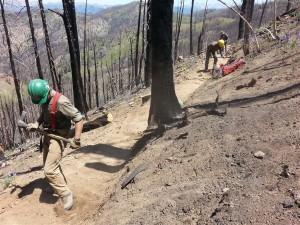 Idaho Conservation Corp youth at work on Osberg Ridgeline Trail.