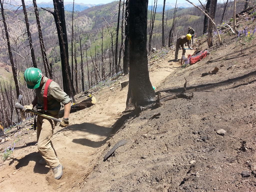 Idaho Conservation Corp youth at work on Osberg Ridgeline Trail.