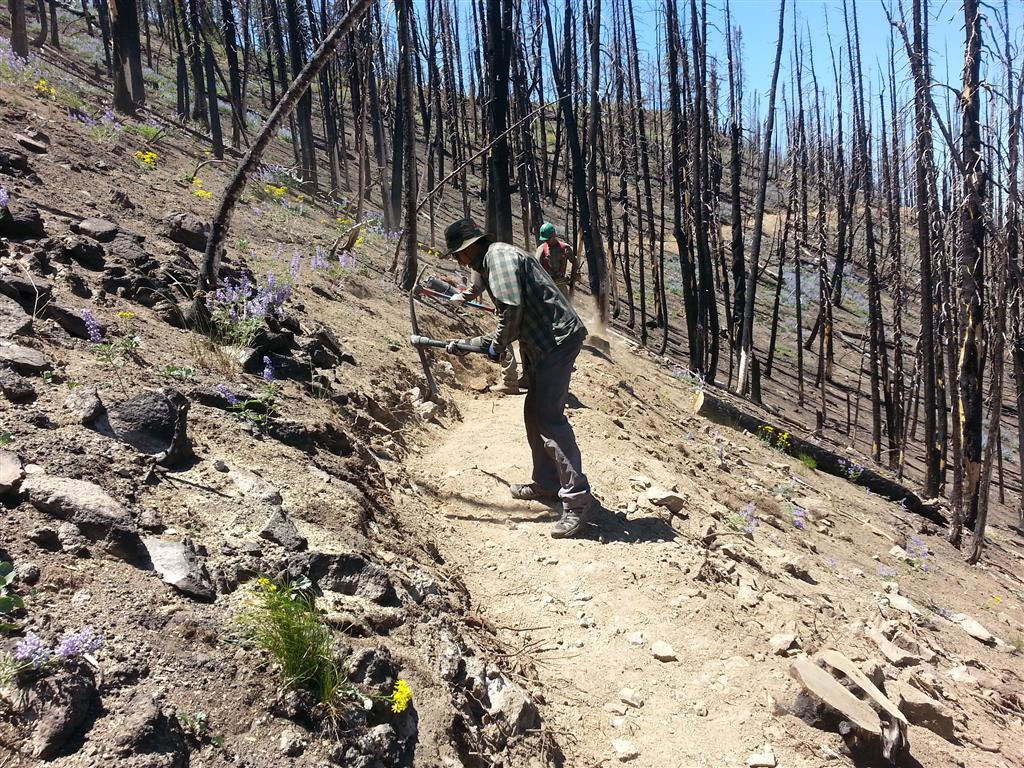 The KRD Trail Crew and crews from the Idaho Conservation Corp at work on Osberg.