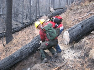 Forest Service sawyers cutting out Lodgepole Tr.